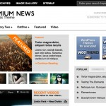 Premium News | Just another WooThemes demo 2012-07-21 11-11-10