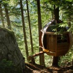 hemloft-secret-treehouse-hiding-in-the-woods-of-whistler-canada-2