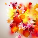 autumn-leaf-composition